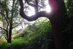 Nepal07_MitrarosPh_239